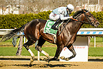 APR 03, 2021 :  Modernist with Junior Alverado aboard , wins the Grade 3  Excelsior Stakes, for 4- year olds & up, going 1 1/8 mile, at Aqueduct Racetrack, Ozone Park, NY. Dan Heary-Eclipse Sportswire-CSM