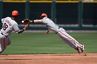 San Francisco Giants second baseman Tyler Brown (8) dives for a ball during a Minor League Spring Training game against the Cleveland Indians at the San Francisco Giants Training Complex on March 14, 2018 in Scottsdale, Arizona. (Zachary Lucy/Four Seam Images)