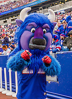 19 October 2014: Buffalo Bills Mascot Billy the Buffalo entertains during a game between the Buffalo Bills and the Minnesota Vikings at Ralph Wilson Stadium in Orchard Park, NY. The Bills defeated the Vikings 17-16 in a dramatic, last minute, comeback touchdown drive. Mandatory Credit: Ed Wolfstein Photo *** RAW (NEF) Image File Available ***