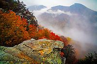 Autumn Storm, Linville Gorge Wilderness