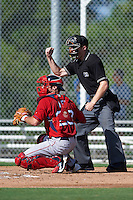 Boston Red Sox catcher Austin Rei (28) throws the ball back to the pitcher as umpire Reed Basner makes a strike call during an instructional league game against the Minnesota Twins on September 26, 2015 at CenturyLink Sports Complex in Fort Myers, Florida.  (Mike Janes/Four Seam Images)