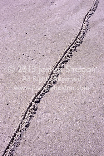 Line drawn in the sand<br />