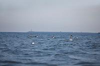SEA_LOCATION_80267