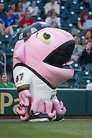 """Squidney Crosby"" of the Zooperstars entertains fans between innings of the International League game between the Columbus Clippers and the Charlotte Knights at BB&T BallPark on May 27, 2015 in Charlotte, North Carolina.  The Clippers defeated the Knights 9-3.  (Brian Westerholt/Four Seam Images)"