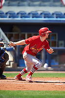 Palm Beach Cardinals second baseman Andrew Brodbeck (5) at bat during a game against the Charlotte Stone Crabs on April 10, 2016 at Charlotte Sports Park in Port Charlotte, Florida.  Palm Beach defeated Charlotte 4-1.  (Mike Janes/Four Seam Images)