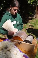 Frisch geschorene Wolle vom Schaf wird mit Nadelwalze kardiert, kardätscht, Kardiermaschine, Schafwolle, Schafschur, Schaf wurde geschoren, Schafe scheren, Schafscherer