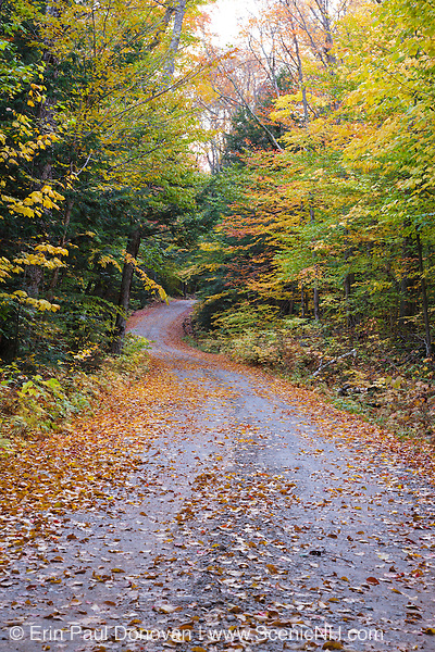 Sandwich Notch Road in Sandwich, New Hampshire USA during the autumn months. This historic route was established in 1801.