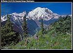 White River Valley Overlook and Mount Rainier (14,411 feet), east of Seattle, Washington. .  John offers private photo tours throughout the western USA, especially Colorado. Year-round.