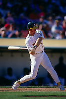 OAKLAND, CA - Mark McGwire of the Oakland Athletics bats during a game at the Oakland Coliseum in Oakland, California in 1990. Photo by Brad Mangin