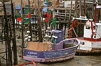 Europe/France/Pays de la Loire/85/Vendée/ENV. de Bouin/Epoids: Le port du Bec