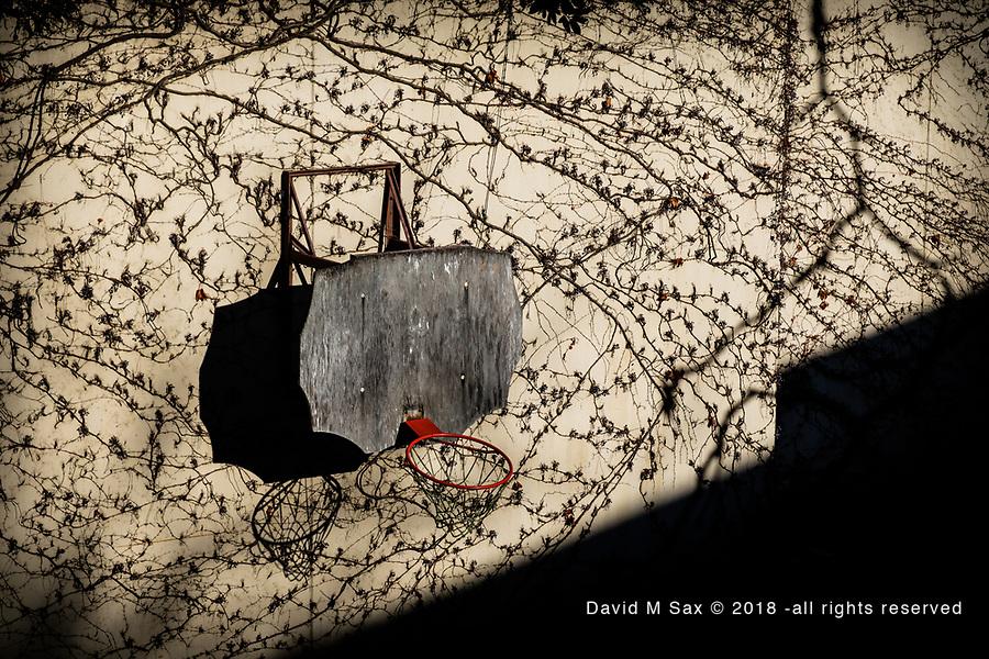 11.17.18 - The Art of Basketball....
