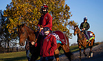 November 4, 2020:  The Lir Jet, trained by trainer Michael Bell, exercises in preparation for the Breeders' Cup Juvenile Turf at Keeneland Racetrack in Lexington, Kentucky on November 4, 2020. Alex Evers/Eclipse Sportswire/Breeders Cup