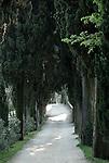 Italy, Veneto, Lake Garda, near Garda, Punta San Vigilio: Pine Tree Alley to Villa Guarienti Brenzone and Locanda San Vigilio | Italien, Venetien, Gardasee, bei Garda, Punta San Vigilio: Pinienallee zur Villa Guarienti Brenzone und der Locanda San Vigilio