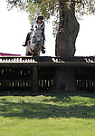 Peter Tersgov Flarup and Silver Ray of Denmark compete in the cross country phase of the FEI  World Eventing Championship at the Alltech World Equestrian Games in Lexington, Kentucky.