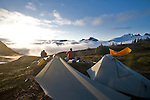 Camping, Sunrise, Alpine environment, Whatcom Pass, Mount Challenger area, Picket Range, North Cascades National Park, wilderness, Cascade Mountains, Washington State, Pacific Northwest, United States, Scott McCredie; Grant Calley,