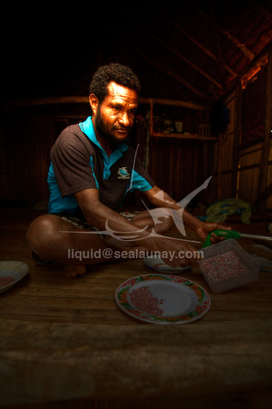 A man making Baggi. Baggi, which are shell necklaces used as money to purchase brides, pigs, and property in the village of Hessessai Bay at PanaTinai (Panatinane)island in the Louisiade Archipelago in Milne Bay Province, Papua New Guinea.  The island has an area of 78 km2..The Louisiade Archipelago is a string of ten larger volcanic islands frequently fringed by coral reefs, and 90 smaller coral islands located 200 km southeast of New Guinea, stretching over more than 160 km and spread over an ocean area of 26,000 km? between the Solomon Sea to the north and the Coral Sea to the south. The aggregate land area of the islands is about 1,790 km? (690 square miles), with Vanatinai (formerly Sudest or Tagula as named by European claimants on Western maps) being the largest..Sideia Island and Basilaki Island lie closest to New Guinea, while Misima, Vanatinai, and Rossel islands lie further east..The archipelago is divided into the Local Level Government (LLG) areas Louisiade Rural (western part, with Misima), and Yaleyamba (western part, with Rossell and Tagula islands. The LLG areas are part of Samarai-Murua District district of Milne Bay. The seat of the Louisiade Rural LLG is Bwagaoia on Misima Island, the population center of the archipelago.PanaTinai (Panatinane) is an island in the Louisiade Archipelago in Milne Bay Province, Papua New Guinea. The island has an area of 78 km2..The Louisiade Archipelago is a string of ten larger volcanic islands frequently fringed by coral reefs, and 90 smaller coral islands located 200 km southeast of New Guinea, stretching over more than 160 km and spread over an ocean area of 26,000 km? between the Solomon Sea to the north and the Coral Sea to the south. The aggregate land area of the islands is about 1,790 km? (690 square miles), with Vanatinai (formerly Sudest or Tagula as named by European claimants on Western maps) being the largest..Sideia Island and Basilaki Island lie closest to New Guinea, while Misima, Vanatinai, and Ros