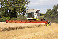 22.7.2020 Harvesting Barley in Rutland <br />  ©Tim Scrivener Photographer 07850 303986<br />      ....Covering Agriculture In The UK.