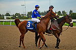 TORONT,CANADA-SEP 15: Fair Maiden is before the Natalma Stakes at Woodbine Race Track on September 15,2019 in Toronto,Ontario,Canada. Kaz Ishida/Eclipse Sportswire/CSM
