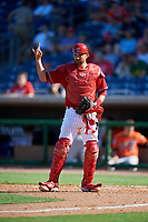Philadelphia Phillies catcher Drew Butera (41) during a Grapefruit League Spring Training game against the Baltimore Orioles on February 28, 2019 at Spectrum Field in Clearwater, Florida.  Orioles tied the Phillies 5-5.  (Mike Janes/Four Seam Images)