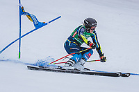 28th December 2020; Semmering, Austria; FIS Womens Giant Slalom World Cu Skiing; Sara Hector of Sweden in action during her 1st run of women Giant Slalom of FIS ski alpine world cup at the Panoramapiste in Semmering