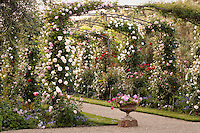 Gravel path under Eden rose covered trellis leading into grand entry for California wine county garden