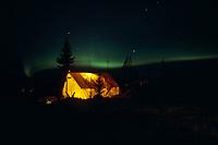 N. Lights Over Cripple Crk Chkpt 1986 Iditarod IN AK