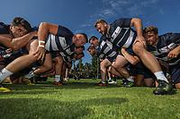 London Scottish Rugby Club