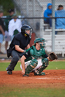 Umpire Kyle Klink and Dartmouth Big Green catcher Kyle Holbrook (9) await the pitch during a game against the Southern Maine Huskies on March 23, 2017 at Lake Myrtle Park in Auburndale, Florida.  Dartmouth defeated Southern Maine 9-1.  (Mike Janes/Four Seam Images)