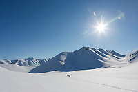 Brooks Range mountains, Arctic, Alaska.