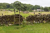 Northumberland, England, UK.  Ladder Stile over Farmer's fence on Hadrian's Wall Footpath, near Chollerford.