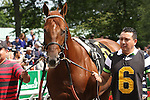 July 04 2015: Speightster with Jose Lezcano win the 98th running of the Grade III Dwyer Stakes for 3-year olds, going 1 mile at Belmont Park.  Trainer William Mott. Owner Winstar Farm. Sue Kawczynski/ESW/CSM