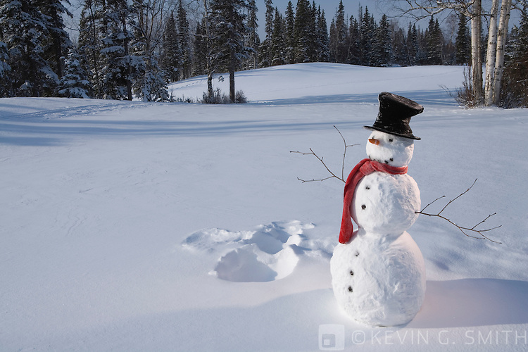 Snowman with red scarf and black top hat standing next to snow angel that it made,  snowy meadow, birch trees and spruce forest in back ground.