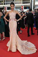 CINDY BRUNA<br /> The Beguiled' Red Carpet Arrivals - The 70th Annual Cannes Film Festival<br /> CANNES, FRANCE - MAY 24 attends the 'The Beguiled' screening during the 70th annual Cannes Film Festival at Palais des Festivals on May 24, 2017 in Cannes, France