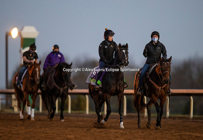 November 4, 2020: Kameko, trained by trainer Andrew M. Balding, exercises in preparation for the Breeders' Cup Mile at Keeneland Racetrack in Lexington, Kentucky on November 4, 2020. Alex Evers/Eclipse Sportswire/Breeders Cup