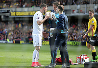 Borja Baston of Swansea City is treated by physio after being involved in a collision during the Premier League match between Watford and Swansea City at Vicarage Road Stadium, Watford, England, UK. Saturday 15 April 2017