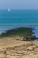 France, Pas-de-Calais (62), Côte d'Opale, Audresselles:  pêcheurs de moules sur le littoral rocheux//  France, Pas de Calais, Cote d'Opale (Opal Coast), Audresselles: mussel fishermen on the rocky coastline