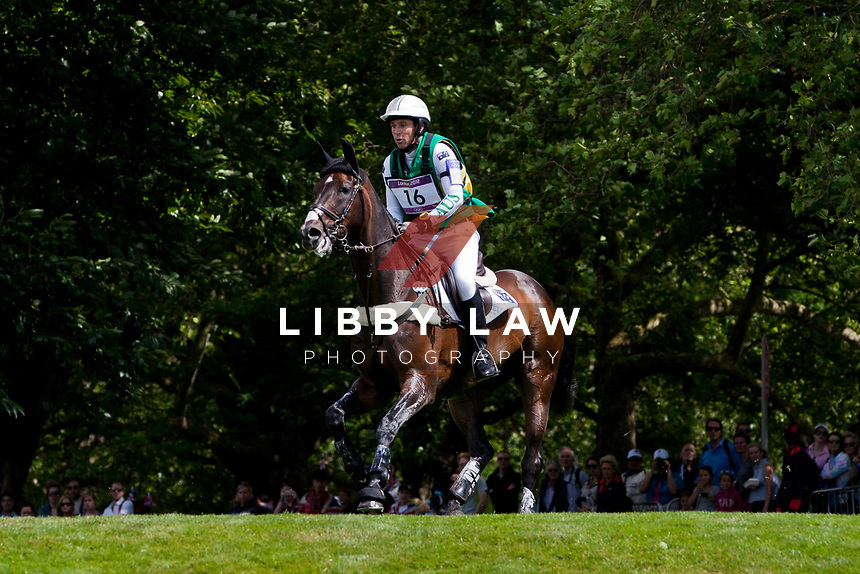 AUS-Sam Griffiths (HAPPY TIMES) 2012 LONDON OLYMPICS (Monday 30 July 2012) EVENTING CROSS COUNTRY: INTERIM-ELIM