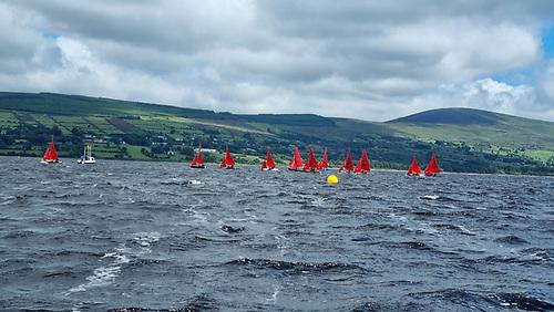 The Mirror fleet racing on Blessington Lake