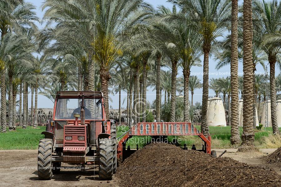 EGYPT, Bilbeis, Sekem organic farm, preparing of organic compost for desert farming, machine for turning the compost / AEGYPTEN, Bilbeis, Sekem Biofarm Herstellung von Kompost fuer Landwirtschaft in der Wueste