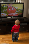 18 month old toddler boy watching cartoon on television