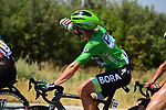 The peloton including Green Jersey Peter Sagan (SVK) Bora-Hansgrohe during Stage 16 of the 2019 Tour de France running 177km from Nimes to Nimes, France. 23rd July 2019.<br /> Picture: ASO/Pauline Ballet   Cyclefile<br /> All photos usage must carry mandatory copyright credit (© Cyclefile   ASO/Pauline Ballet)