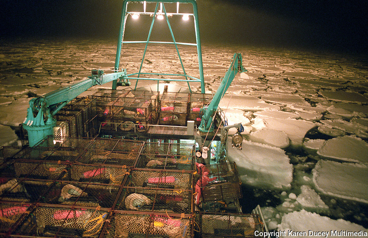 """The fishing vessel """"Kiska Sea"""" fishes for opilio crab in the arctic ice pack of the Bering Sea in January and February of 1995.  The Bering Sea is known for having the worst storms in the world.    Nights are long and cold in the arctic in the winter.  Crab fishing in the Bering Sea is considered to be one of the most dangerous jobs in the world.  This fishery is managed by the Alaska Department of Fish and Game and is a sustainable fishery.  The Discovery Channel produced a TV series called """"The Deadliest Catch"""" which popularized this fishery. Today this fishery, largely based out of Dutch Harbor, AK has been consolidated resulting in a lot less boats fishing."""