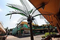 Palme di plastica. Plastic palm trees.