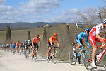 The peloton including Olympic Champion Greg Van Avermaet (BEL) CCC Team on sector 2 Bagnaia during Strade Bianche 2019 running 184km from Siena to Siena, held over the white gravel roads of Tuscany, Italy. 9th March 2019.<br /> Picture: Seamus Yore   Cyclefile<br /> <br /> <br /> All photos usage must carry mandatory copyright credit (© Cyclefile   Seamus Yore)
