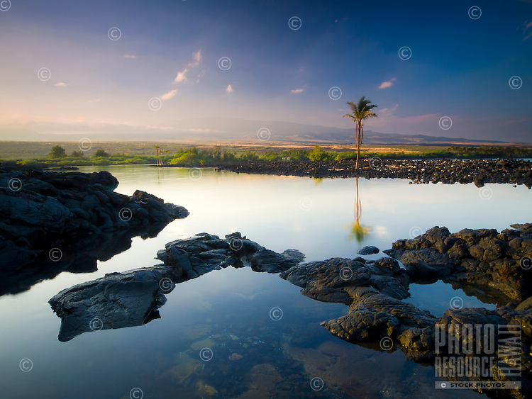 Morning light falls on the calm reflective water of Kiholo Bay, with Hualalai in the distance, Big Island.