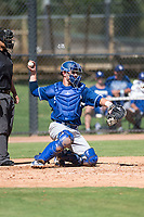 Los Angeles Dodgers catcher Tre Todd (44) throws back to the pitcher during an Instructional League game against the Oakland Athletics at Camelback Ranch on October 4, 2018 in Glendale, Arizona. (Zachary Lucy/Four Seam Images)