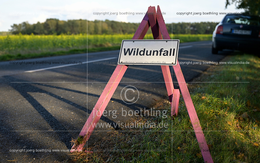 GERMANY, lower saxonia, Forest, sign board wild animal accident on road / DEUTSCHLAND, Niedersachsen, Wald, Straße, Hinweisschild Wildunfall