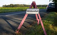 GERMANY, lower saxonia, Forest, sign board wild animal accident on road / DEUTSCHLAND, Niedersachsen, Wald, Straße, Hinweisschild Wildunfall