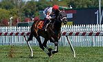 October 3, 2020: Factor This #7, ridden by Florent Geroux, wins the Dinner Party Stakes during Preakness Stakes Day at Pimlico Race Course in Baltimore, Maryland. Scott Serio/Eclipse Sportswire/CSM