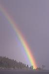 "Rainbow striking shoreline during rain storm Coeur D"" Alene, Idaho State USA"